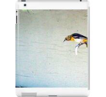 SITTING ON THE HORN iPad Case/Skin