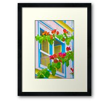 Colored Flowers in Front of  Windows House Framed Print