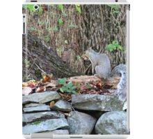 ON THE STONE WALL iPad Case/Skin