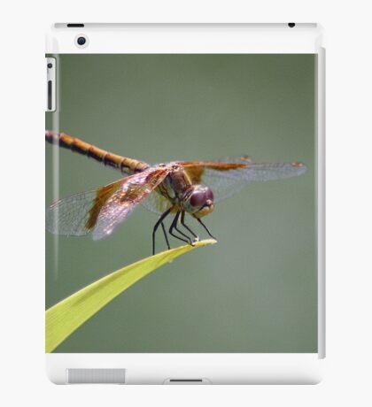 Goggles On, Flaps Down.... iPad Case/Skin