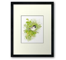 Cute Little Black-Capped Chickadee Watercolor Framed Print