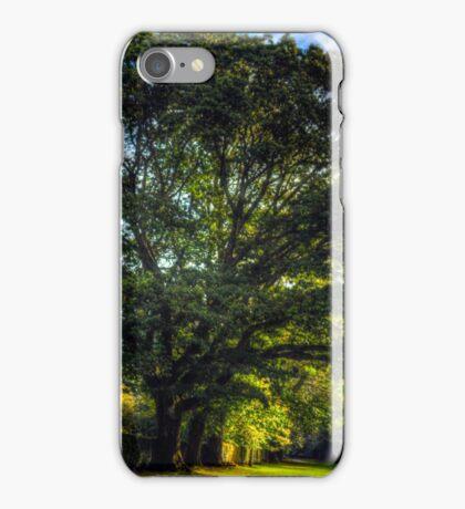 Autumn in Lake District iPhone Case/Skin
