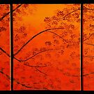 FALL TREES TRIPTYCH by Tammera