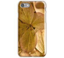 Hydrangea Petals - Macro  iPhone Case/Skin
