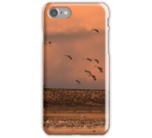 Joining the Roost iPhone Case/Skin