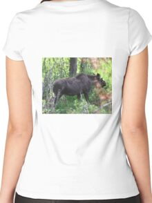 Bubba, the baby bull moose Women's Fitted Scoop T-Shirt