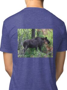 Bubba, the baby bull moose Tri-blend T-Shirt