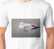 Ring Billed Gull Unisex T-Shirt