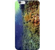 UNDERWATER LANDSCAPE PERSPECTIVES iPhone Case/Skin