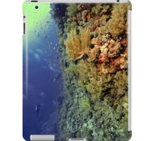 UNDERWATER LANDSCAPE PERSPECTIVES iPad Case/Skin