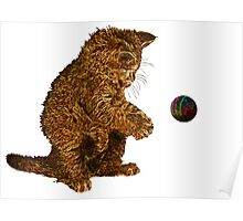 gold kitty cat Poster
