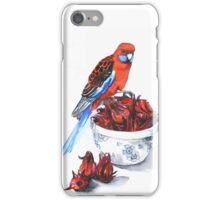 The Rosellas iPhone Case/Skin