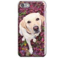 Lab in the Leaves iPhone Case/Skin