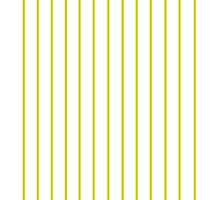 Quince Horizontal Stripes on White Photographic Print