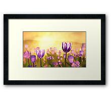 Purple Jubilee Framed Print