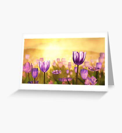 Purple Jubilee Greeting Card