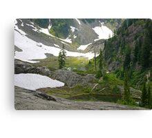 trail in heather meadows, wa, usa Canvas Print