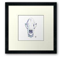 bear skull Framed Print