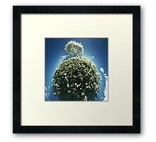 Daisy Planet Framed Print