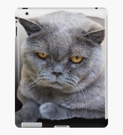 Grumpy Shorthair iPad Case/Skin