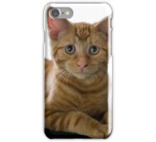 Concerned Kitten iPhone Case/Skin
