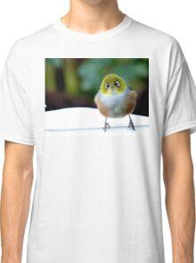 Little boy lost! - Silvereye - Wax Eye - New Zealand Classic T-Shirt
