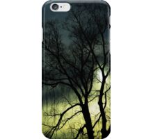 Trees - weeping willow, winter (2016) iPhone Case/Skin