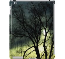 Trees - weeping willow, winter (2016) iPad Case/Skin