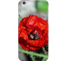 The Bumble & The Poppy - NZ iPhone Case/Skin