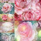 Romatische Rosen - Romantic Roses by Martina Cross