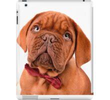 Bow Tie Baby Dogue iPad Case/Skin