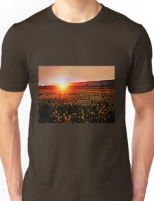 Rapeseed Flowers at Sunset Unisex T-Shirt