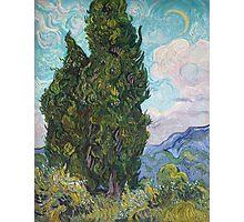 Vincent Van Gogh - Cypresses  Photographic Print