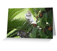 Kitten and cycad Greeting Card