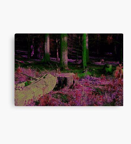 Mystical Fairy Forest Canvas Print