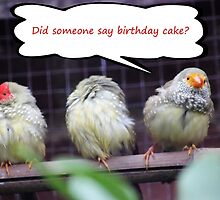 Birthday Cake Card by Vicki Spindler (VHS Photography)