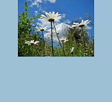 Oxeye Daisies Wildflowers - Leucanthemum vulgare Unisex T-Shirt