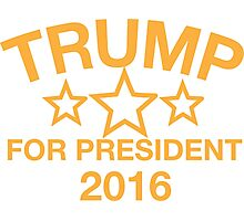 Donald Trump For President Photographic Print