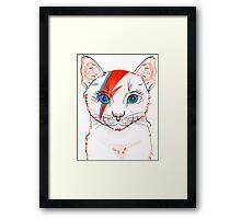 cat light Framed Print