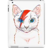 cat light iPad Case/Skin