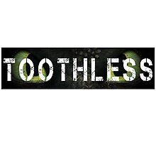 Toothless Photographic Print