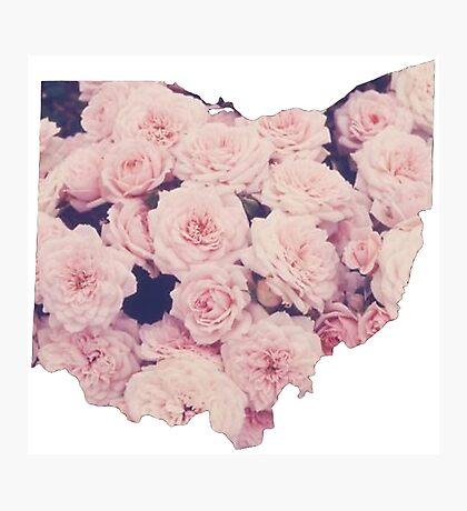 Pink Ohio Photographic Print
