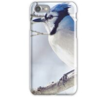 Pretty in Blue iPhone Case/Skin