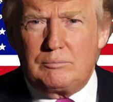 Trump for President Sticker