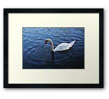 Stratford Swan Framed Print