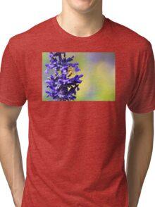 Floral Art - Spring Fever - Sharon Cummings Tri-blend T-Shirt