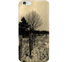 Baby it's snow outside iPhone Case/Skin