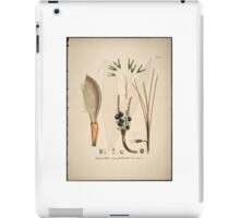 Historia naturalis palmarum, opus tripartitum (Natural History of Palms in 3 volumes) iPad Case/Skin
