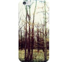 Trees - morning winter sunlight (2016) iPhone Case/Skin