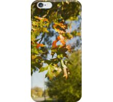 Auntumn leaves iPhone Case/Skin